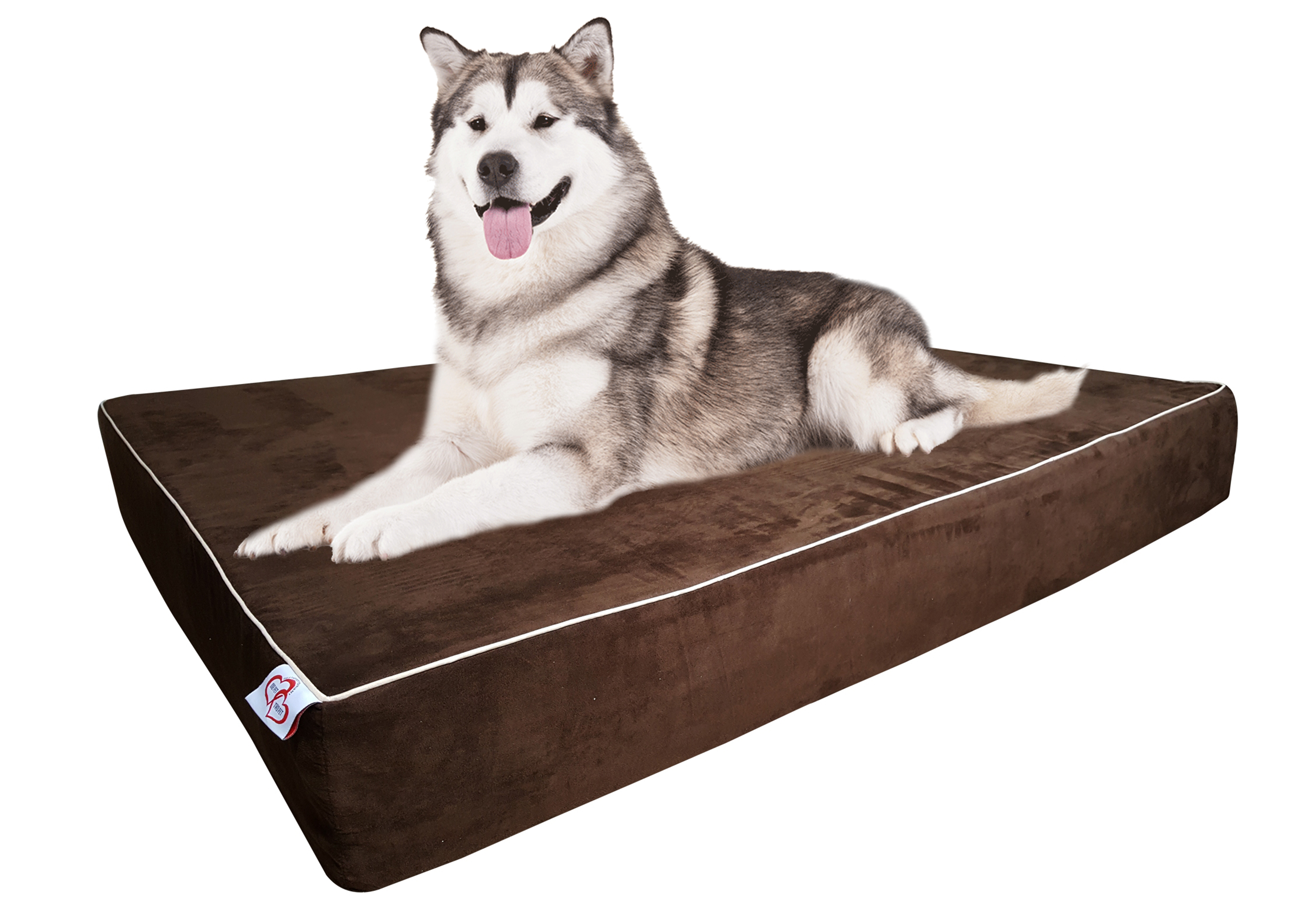 Foam Dog Beds For Large Dogs